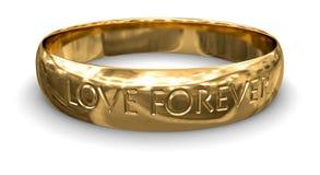 金戒指(包括的裁减路线) 图库摄影