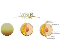金星分层堆积与Infographics类地行星的Clipart 库存照片