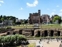 金星和罗马寺庙罗马斗兽场在市罗马意大利 库存图片