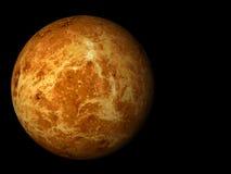 金星 免版税图库摄影