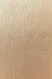 金木头 图库摄影