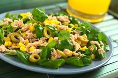 金枪鱼、新鲜玉米和橄榄沙拉 免版税图库摄影