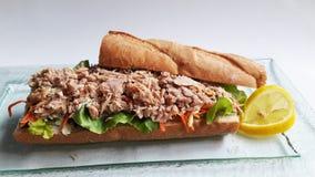 金枪鱼三明治和柠檬 免版税图库摄影