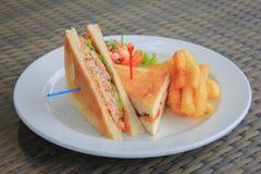 金枪鱼三明治供食用炸薯条 图库摄影