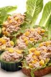 金枪鱼三明治和黄瓜开胃菜用玉米 库存图片