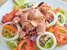 金枪鱼和蔬菜沙拉 库存照片