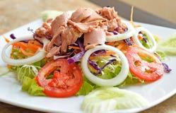 金枪鱼和蔬菜沙拉 免版税库存照片