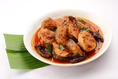 金枪鱼咖喱南印地安烹调 免版税库存图片