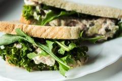金枪鱼腌制三明治用在白色板材的沙拉 免版税库存图片