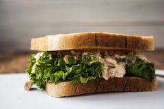 金枪鱼腌制三明治用在白色板材的沙拉 库存图片