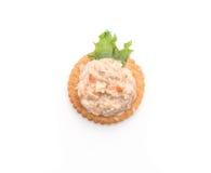 金枪鱼色拉用薄脆饼干 免版税图库摄影