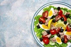 金枪鱼色拉用西红柿、黄瓜、黑橄榄和煮沸 库存照片