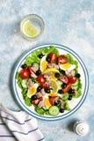 金枪鱼色拉用西红柿、黄瓜、黑橄榄和煮沸 库存图片