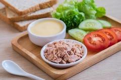 金枪鱼,蕃茄,黄瓜,莴苣,奶油,面包,三明治成份 库存图片
