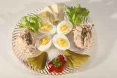金枪鱼头脑和煮沸的鸡蛋用咸味干乳酪 免版税库存图片