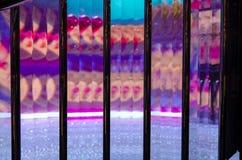 金枪鱼frozencolorful反射在温哥华 免版税库存照片
