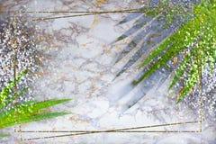 金框架,在大理石背景的绿色热带棕榈叶与金银闪闪发光 r 库存照片