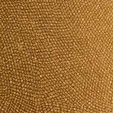 金模式爬行动物皮肤 免版税库存照片