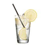 金汤尼用在白色背景隔绝的柠檬 免版税库存图片