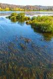 金河Suenga河Berd的附庸国 西伯利亚, Ru 库存图片
