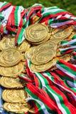 金牌运动员保加利亚瓦尔纳16 05 2018年 库存照片