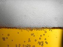 金琥珀色的啤酒极端特写镜头与泡沫的头和泡影的 库存图片