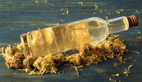 金盏草和春黄菊面部补品  库存图片