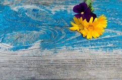 金盏草和紫罗兰花的构成在一个老木被绘的蓝色委员会顶部 库存照片