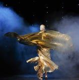 金衣裳土耳其腹部舞蹈这奥地利的世界舞蹈 免版税图库摄影