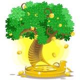 金货币结构树 免版税库存图片