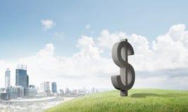 金钱做和财富概念由在自然风景的石美元标志提出了 库存照片