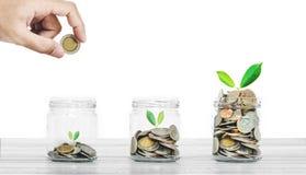 金钱储款和商业投资概念,瓶在白色木头的硬币在白色背景 库存图片