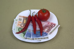 金钱和食物在板材,图象2 库存图片