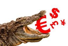 金钱标志(欧元,美元,磅, 免版税库存图片