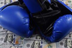 金钱的体育,装箱为金钱 美元和拳击手套 图库摄影