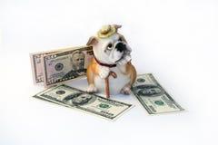 金钱的存钱罐,代表在独裁者的图象 免版税库存图片