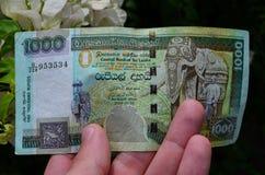 金钱,斯里兰卡 免版税图库摄影