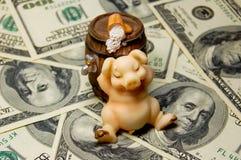 金钱,猪,啤酒 库存照片