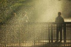 金雨-水滴  免版税库存照片