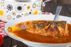 金额根据慷慨的热匈牙利膳食产生辣椒粉辣准备的红河的汤的明亮的烹调鱼 免版税库存图片