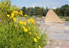 金鸡菊花和晴朗的时钟, Salgirka公园,辛菲罗波尔,克里米亚 免版税图库摄影