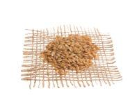 金黄亚麻籽 在黑森州的织品,被隔绝的白色bac的五谷 图库摄影