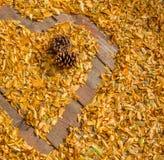 金黄叶子的心脏 免版税库存照片