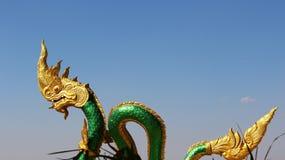 金黄国王纳卡语 免版税图库摄影