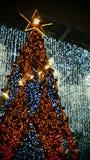 金黄圣诞树星电灯泡发光 免版税库存照片