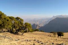 金黄埃赛俄比亚的横向 免版税库存照片