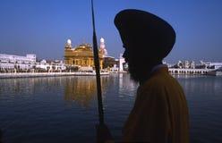 金黄寺庙的锡克教徒的战士,阿姆利则,旁遮普邦,印度 免版税库存图片
