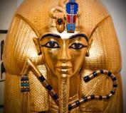 金黄屏蔽tutankhamen 免版税库存照片