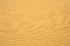 金黄波纹沙子 免版税库存图片
