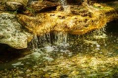 金黄瀑布到胡说的溪和小河里 库存图片